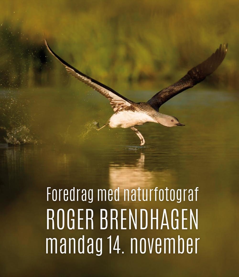 2016-10-12-presentasjonsbilder-med-tekst-roger-brendhagen